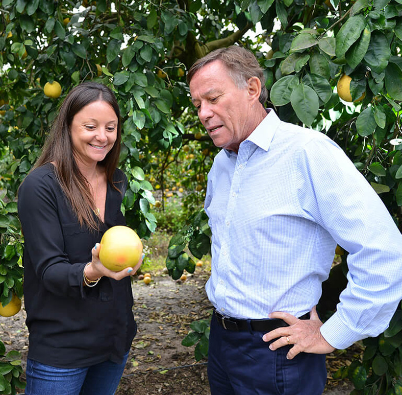 partnership in asset management: Melanie and Michel inspecting grapefruit in citrus grove.